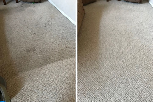 Carpet-Cleaning-Before-and-After1